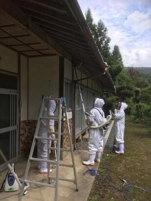 空き家管理でハチの巣除去1